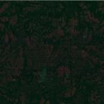 Hoffman Fabric 1895 696 Bear
